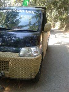 Bambubil1